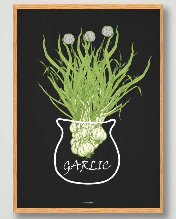 Garlic - plakat