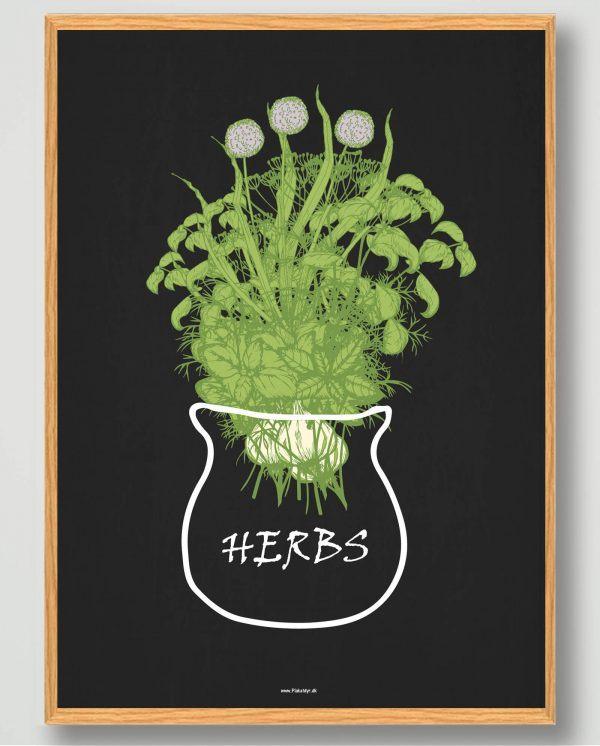 Herbs - plakat