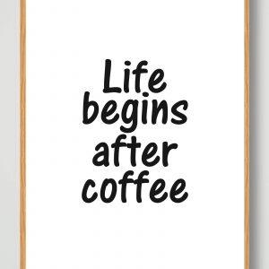Life begins... - plakat