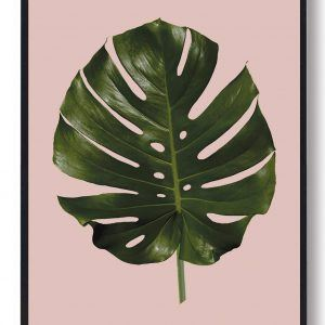 Palm leave - naturplakat