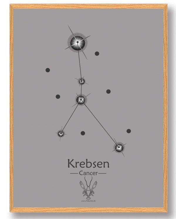 Stjernebillede krebsen (grå) - plakat