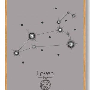 Stjernebillede løven (grå) - plakat