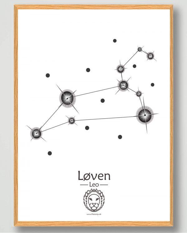 Stjernebillede løven (hvid) - plakat
