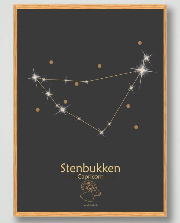 Stjernebillede stenbukken (sort) - plakat