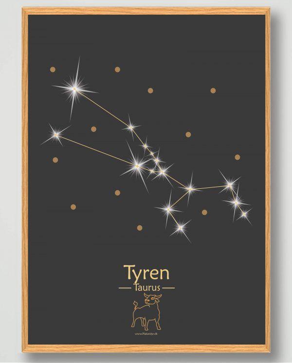 Stjernebillede tyren (sort) - plakat