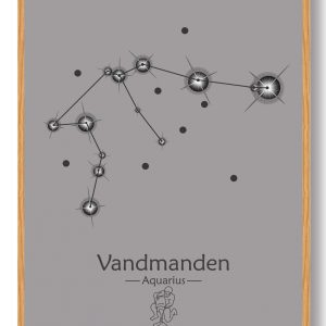 Stjernebillede vandmanden (grå) - plakat