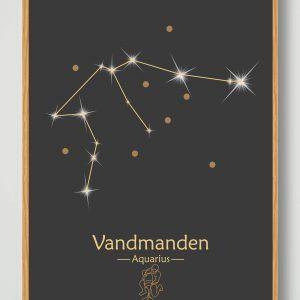 Stjernebillede vandmanden (sort) - plakat