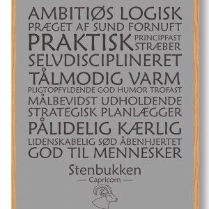 Stjernetegn stenbukken (grå) - plakat