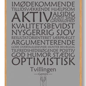 Stjernetegn tvillingen (grå) - plakat