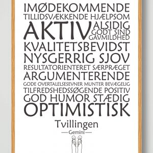 Stjernetegn tvillingen (hvid) - plakat