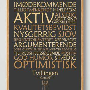 Stjernetegn tvillingen (sort) - plakat