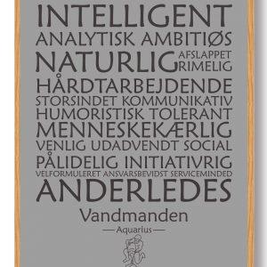 Stjernetegn vandmanden (grå) - plakat