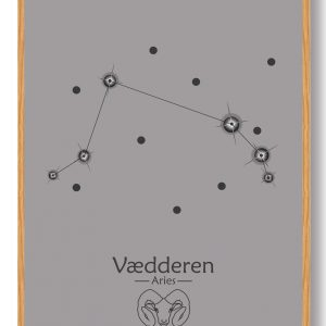Stjernebillede vædderen (grå) - plakat