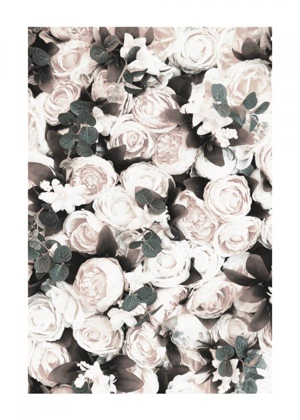A box of roses - plakat