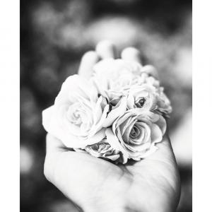 A handful of roses - plakat