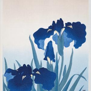 Blue floral - Japansk kunstplakat