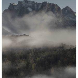 Foggy morning - Brian Lichtenstein plakat