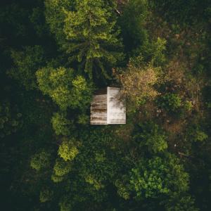 Hytten i skoven - Airpixels plakat