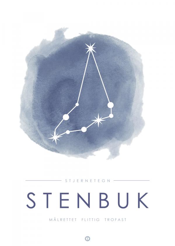 Stjernebillede plakat - Stenbuk