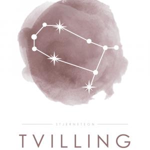 Stjernebillede plakat - Tvilling