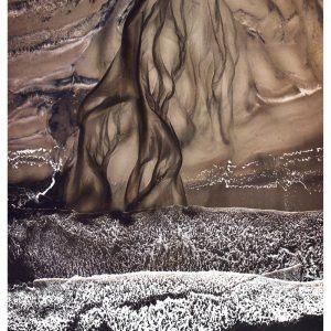 Vejers strand - Brian Lichtenstein plakat