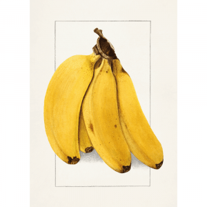 Bananer - Retro plakat