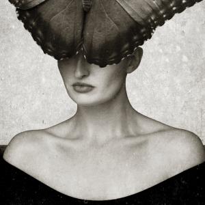 Butterfly woman plakat