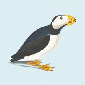 Lunde fuglen - Retro plakat
