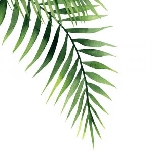 Palme blad plakat No2
