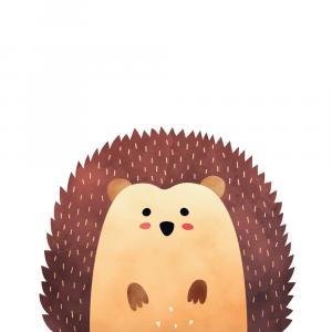 Skovens pindsvin plakat
