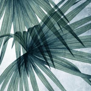 Store palmeblade plakat