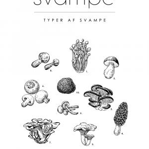 Svampe - Mad guide plakat