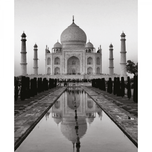 Taj Mahal - Plakat