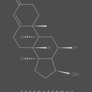 Testosterone - Molekyle plakat