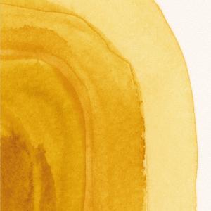 Yellow shades plakat