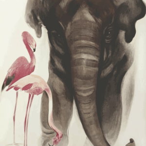 Zoo plakat - Elefant 2