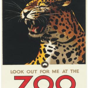 Zoo plakat - Leopard 2