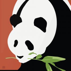 Zoo plakat - Panda 3