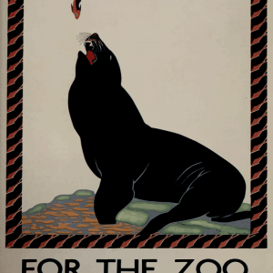Zoo plakat - Søløve