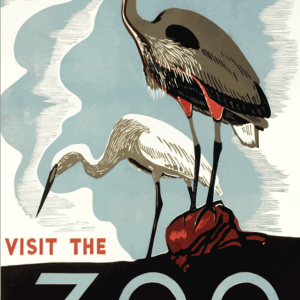 Zoo plakat - Stork