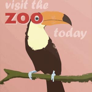 Zoo plakat - Tukan