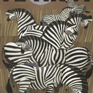 Zoo plakat - Zebraer