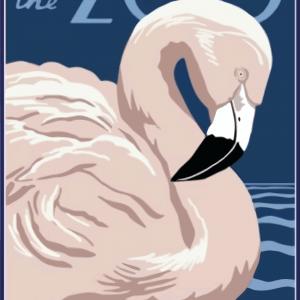 Zoo plakat - flamingo