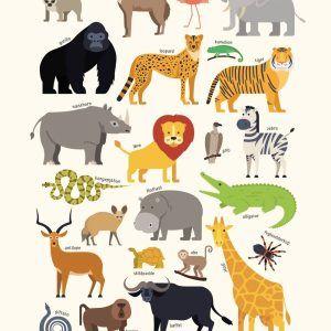 Afrikas dyr - Børneplakat