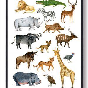 Afrikas dyr - håndtegnet plakat