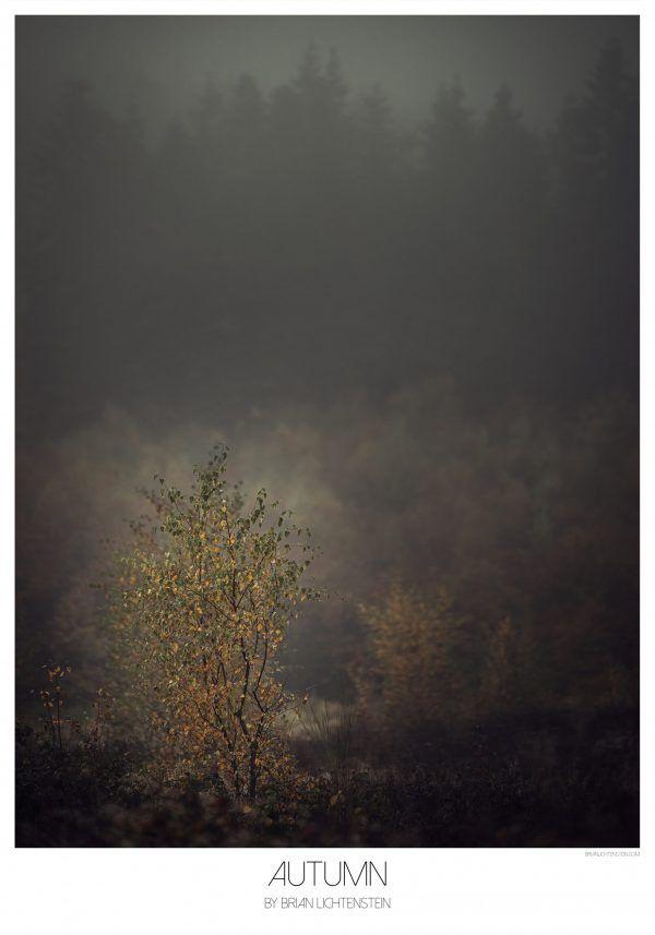Autumn - Brian Lichtenstein plakat