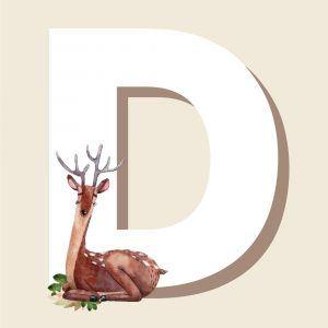 D - Børneplakat med bogstav