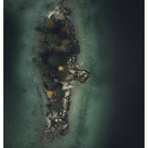Isolated - Brian Lichtenstein plakat