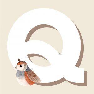 Q - Børneplakat med bogstav