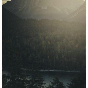 The view - Brian Lichtenstein plakat